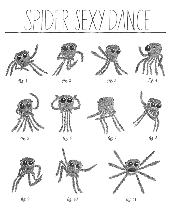 BHR-jumping-spiders-10-21-13-v3-2